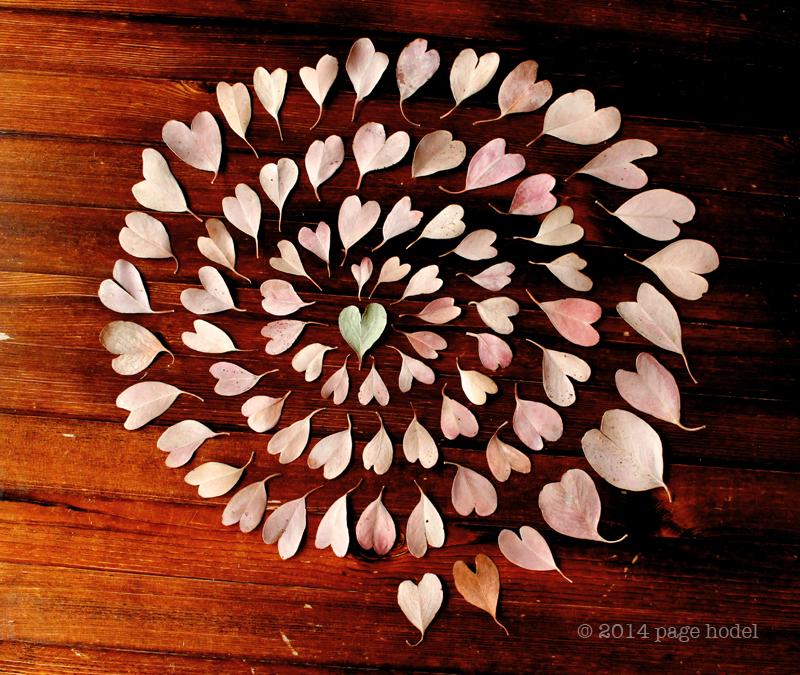 heart_of_hearts.10x10.