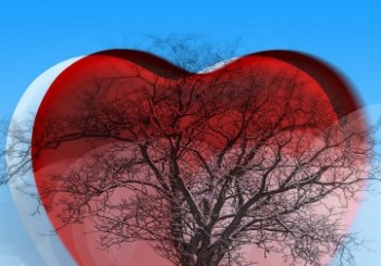 thumb_2_heart-tree-650
